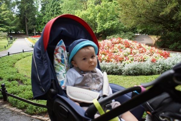 #matkafotografuje: Żabek w parku Oliwskim