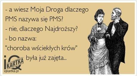 źródło: iqkartka.pl