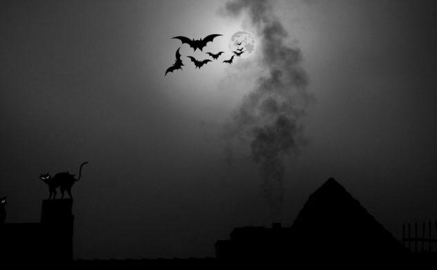 Gdy dziecko boi się ciemności…